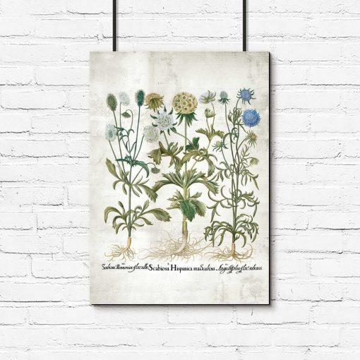 Plakat rustykalny z kwiatami ogrodowymi do powieszenia w sklepie