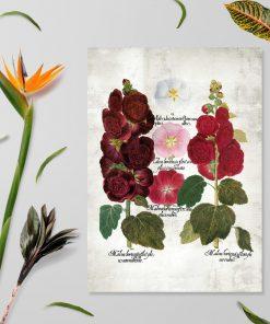 Plakat rustykalny z malwami