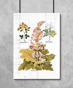 Plakat rustykalny z motywem botanicznym