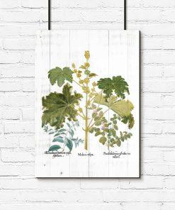 Plakat rystykalny z roślinami liściastymi