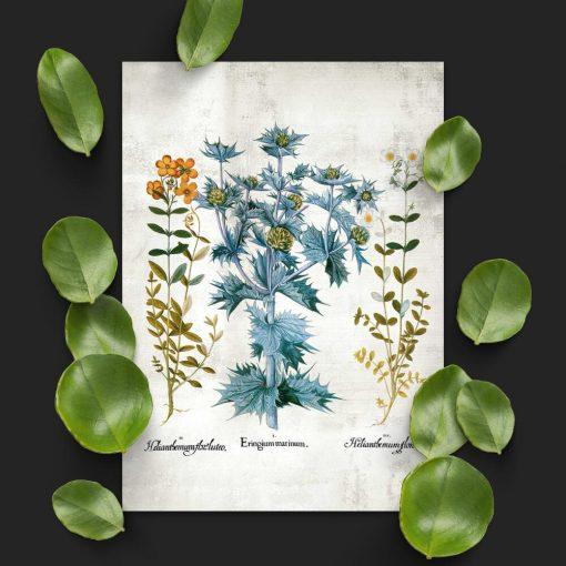 Plakat z motywem kwiatowym w stylu rustykalnym
