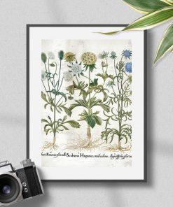 Plakat z motywem roślin kwitnących do dekoracji poczekalni