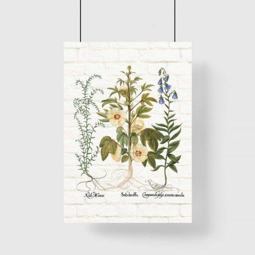 Plakat z motywem roślinnym do nauki botaniki
