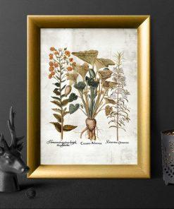 Plakat z ziołami i kwiatuszkami