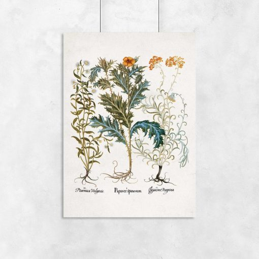 Plakaty z motywem roślinnym