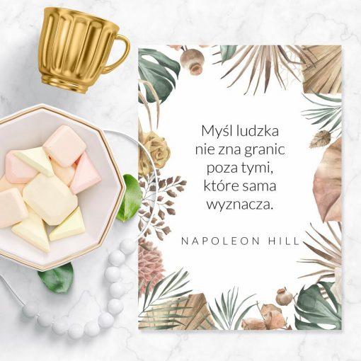 Plakat N. Hilla